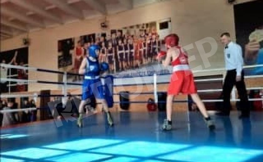 В Каменском стартовал турнир по боксу памяти Кургузова