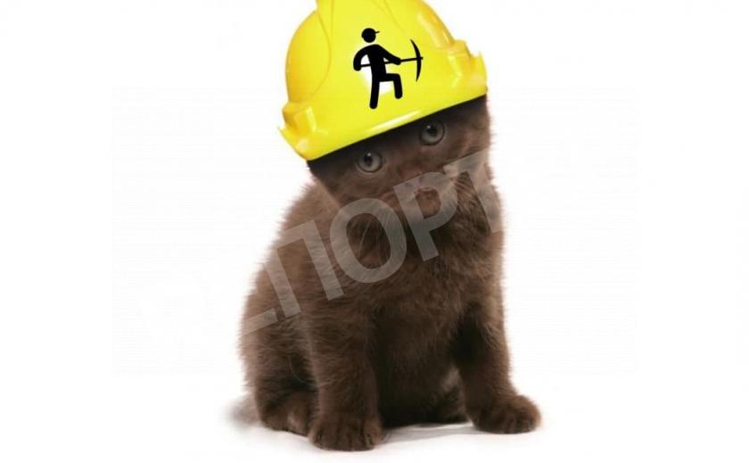 Сквознячок ловил! В Каменском спасали кота-«шахтера»