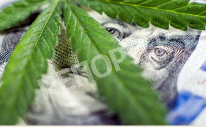 В Каменском полицейские изъяли каннабис на тысячи гривен